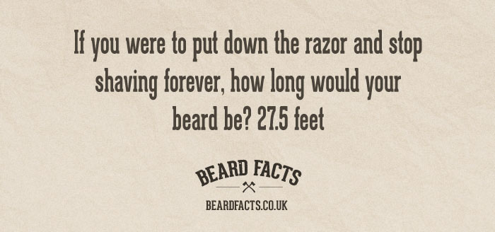 BeardFact #18 - If you were to put...