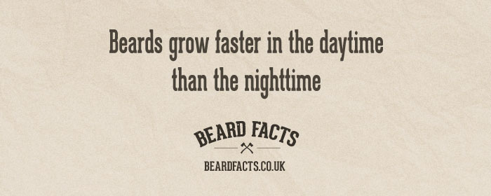 BeardFact #19 - Beards grow faster in...